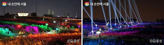 무지개 색깔로 화려하게 변신하는 억새(좌)와 한밤에 펼쳐지는 화려한 레이저쇼(우) 모습 ⓒ김종성