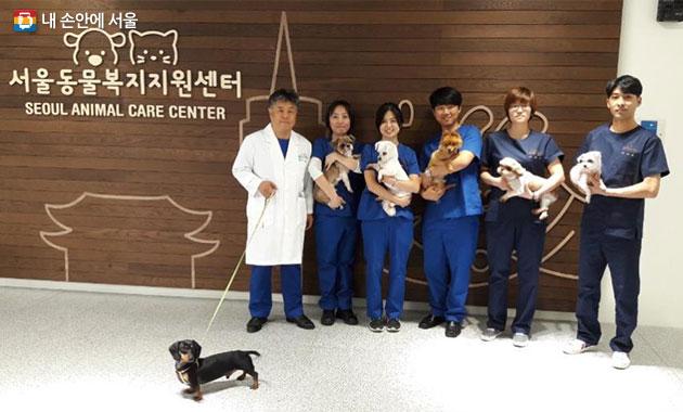 서울동물복지지원센터 직원들