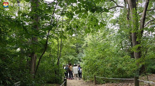 홍릉수목원에서 숲 이야기를 들으며 자연의 소중함을 함께 나누는 시민들 ⓒ박분