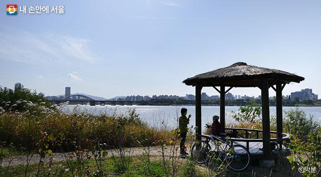 가을 색채 드리운 망원한강공원. 멀리 양화대교와 선유도가 보인다. ⓒ박분
