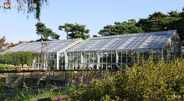 다육식물과 수생식물을 볼 수 있는 선유도공언의 유리 온실 전경 ⓒ박분