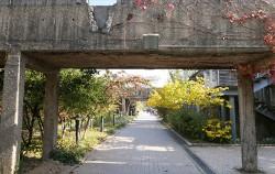 정수장 침전지를 비워낸 낡은 콘크리트 구조물을 아름다운 정원으로 가꾼 선유도공원 ⓒ박분