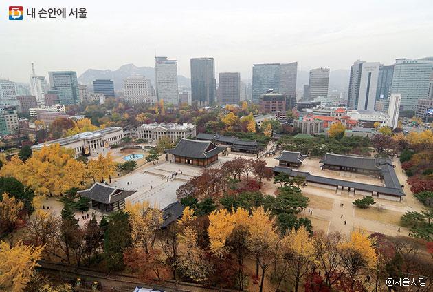 덕수궁의 가을 풍경. 조선의 궁궐은 `검이불루 화이불치(검소하지만 누추하지 않고, 화려하지만 사치스럽지 않다)`의 미학을 담고 있다 ⓒ서울사랑