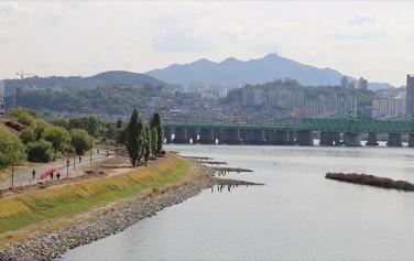 콘크리트 걷어내고 생태복원 '이촌한강공원'