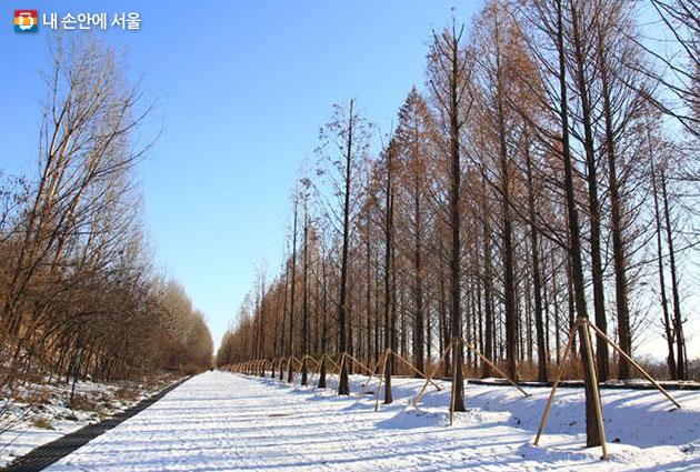 서울둘레길 7코스 겨울풍경