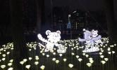 LED 장미 정원