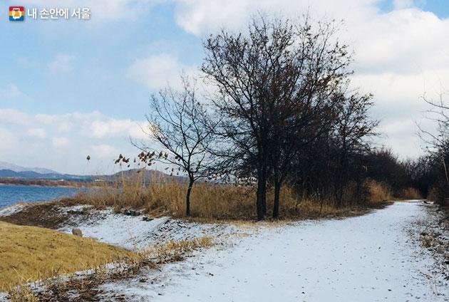 강서한강공원 눈밭오솔길