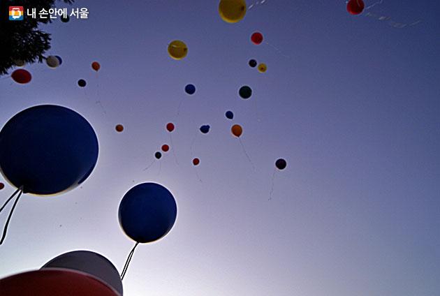 새해 소망을 담은 풍선이 하늘 높이 날아간다
