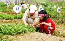다둥이가족농장 참여 모습