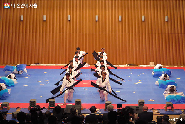 남한 WT 시범단은 다양한 예술적 요소를 가미해 다채로운 태권도의 매력을 선보였다