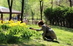 공원에서 사진을 찍는 시민
