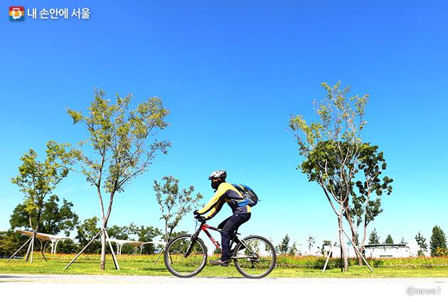 서울시는 자전거로 출근하는 이들을 위해 샤워실과 자전거 보관시설을 운영한다.