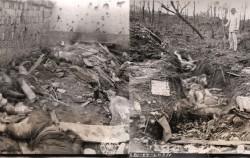 서울시가 2016년 발굴한 위안부 학살 사진 (촬영일 1944.9.15)
