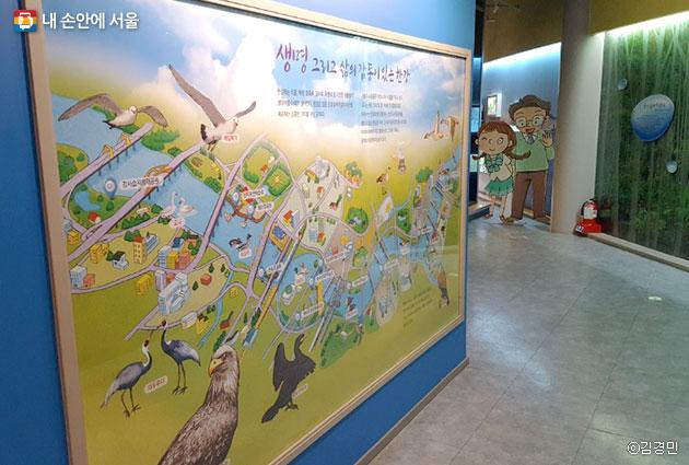 물과 환경전시관에서는 한강을 따라 서식하는 동식물을 한 눈에 볼 수 있다.