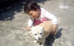 초롱이와 놀아주는 딸 아이의 모습. 실제로는 초롱이를 귀찮게 하고 있다