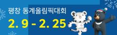 평창 동계올림픽대회 2.9 - 2.25