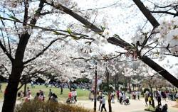 서울 광진구 능동 어린이대공원