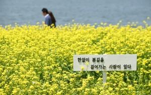 서울시(한강사업본부)는 4월 1일부터 5월 21일까지 51일간 한강공원 전역에 펼쳐지는 를 개최한다고 밝혔다.