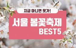 #1. 지금 아니면 못가! 서울 봄꽃축제 BEST 5