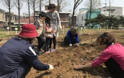 서울어린이대공원 텃밭프로그램 참가자 모집