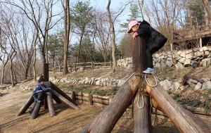 개운산 유아숲 내 모험놀이터. 나무기둥에 매달리고 올라타면서 몸도 마음도 튼튼해진다.