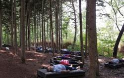 숲 치유 프로그램에 참여해 명상 중인 시민들