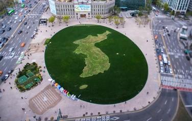 서울광장에 조성된 한반도 모양 '평화의 꽃밭'