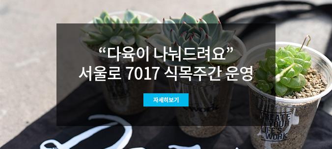 다육이 미니정원 나누기 행사가 4일 오전 10시 서울로 연꽃 트리팟에서 진행된다