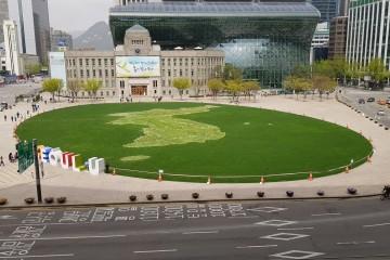 서울광장 한반도 꽃지도
