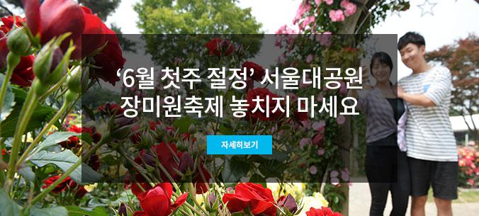 서울대공원 장미원축제