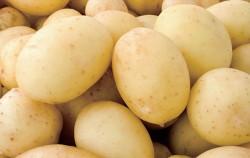 위산분비를 억제하고 식도의 염증을 완화시켜주는 감자