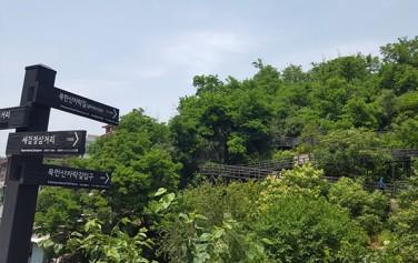 숲 사이로 편한 데크길로 조성된 무장애 자락길 모습이 보인다