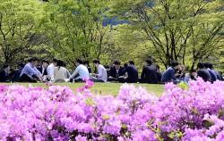 여의도공원에서 쉬고 있는 직장인들