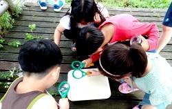 돋보기로 공원의 생물들을 관찰하는 어린이들