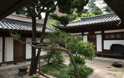 향나무와 소나무가 어우러진 중앙 정원