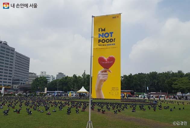 17일, 서울광장에선 토리 인형 입양 행사가 열렸다