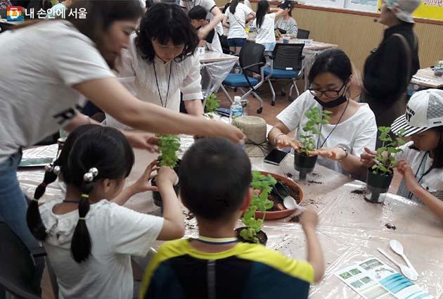 참가자들이 허브모종을 옮겨 심고 있다.