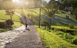 백범광장에서 강아지와 산책하는 시민