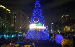 광화문광장에 꾸며진 한여름의 크리스마스 트리