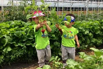 인생 첫 수확의 묘미! '친환경 농촌체험' 접수 시작