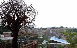 창신동 마을 꼭대기에 자리한 창신소통공작소, 철제 나무 작품 '천년의 바람'