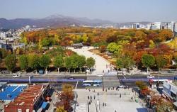 종묘 가을 풍경