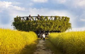 10월 12~18일, 월드컵공원 내 하늘공원에서는 서울억새축제가 열린다