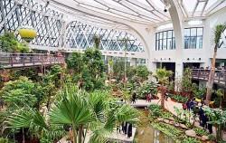 서울 최초 도시형 식물원 서울식물원의 온실