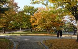 가을이 내려앉은 창경궁 모습