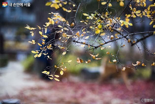마음의 여유를 찾고 싶다면 삼청공원 만한 곳이 없다.