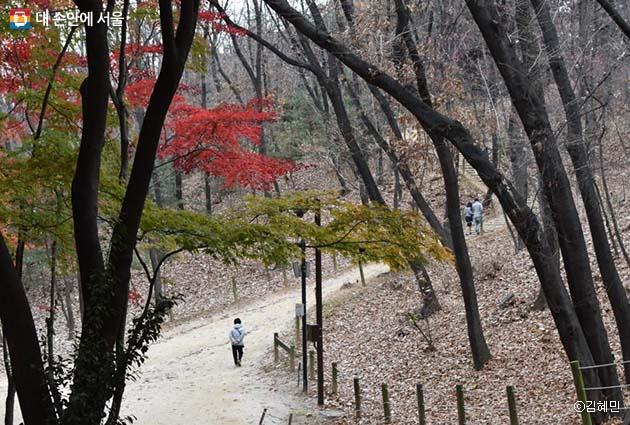 선릉정릉의 고즈넉한 산책길