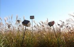 가을 분위기에 한껏 취할 수 있는 하늘공원 억새밭