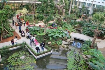 서울식물원에서 열대식물과 따뜻한 겨울나기