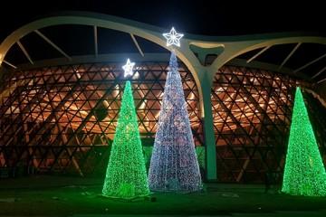서울식물원 반짝반짝 '윈터가든' 2월까지 열려
